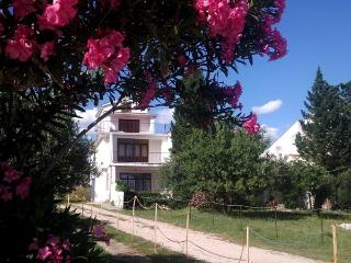 Apartment Miky 1 for 3 pax next to the sea in Novalja - Island Pag vacation rentals