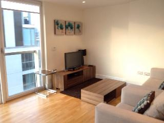 One Bedroom Apartment at Canary Wharf - London vacation rentals