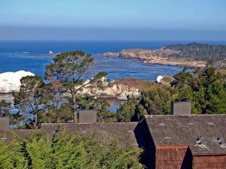 Hyatt Carmel Highlands Ocean Views 1 & 2 Bedrooms - Carmel vacation rentals