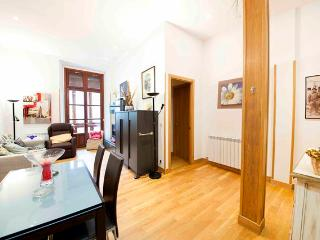 Nice 2 bedroom San Sebastian - Donostia Apartment with Internet Access - San Sebastian - Donostia vacation rentals