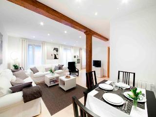 Bellas Artes - San Sebastian - Donostia vacation rentals