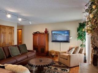 Riva Ridge 655 - Vail vacation rentals