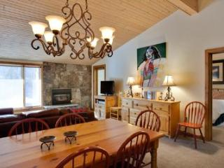 Nice House with Internet Access and Hot Tub - Vail vacation rentals