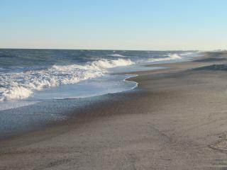 Direct Ocean Front - Free Wifi - Amelia Island vacation rentals