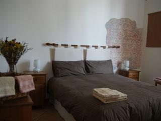 Lovely apartment in Oltrarno - Florence vacation rentals