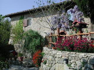 Holidays in Tuscany - Apartment near Florence - Florence vacation rentals