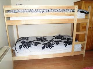 A city centre 1 bedroom apartment - Dublin vacation rentals
