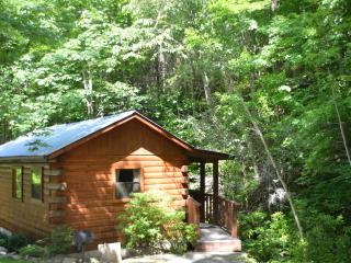 Relaxation/Natures Landing - Cherokee vacation rentals
