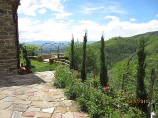 ULIVETO: your view on olive trees - Casalguidi vacation rentals