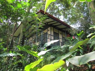 The quintessential jungle cabin, Casa Selva! - Dominical vacation rentals