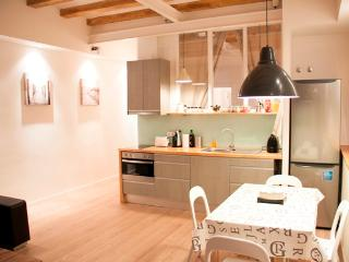 Stylish Flat In The Center Of Barcelona - Barcelona vacation rentals