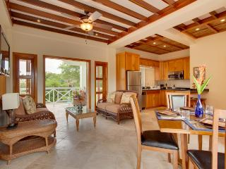 Finely Finished Treetop Villa in Cocoplum - Placencia vacation rentals