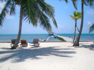 Adorable 1 bedroom condo on private beach! -A3 - Belize Cayes vacation rentals