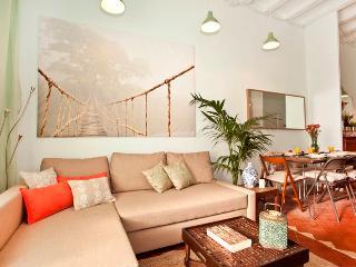 Charming apartment in Sant Antoni! - Barcelona vacation rentals