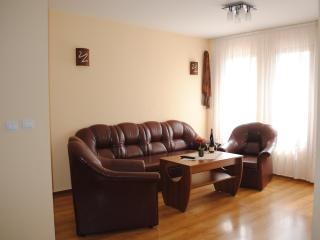 Sparkling two-bedroom apartment with amazing view - Varna vacation rentals