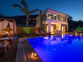 Luxurious villa with private pool in Crete - Keratokampos vacation rentals