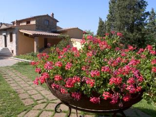 Al Gelso Bianco- farm Holiday Resort - Barberino Val d'Elsa vacation rentals