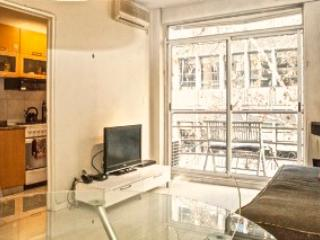 Unbeatable location, Palermo, views - Buenos Aires vacation rentals