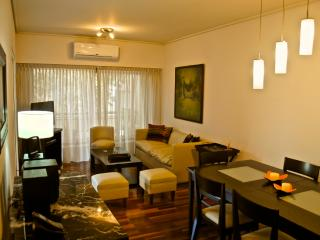 Fantastic & ample 2BD/3BTH, Palermo - Buenos Aires vacation rentals