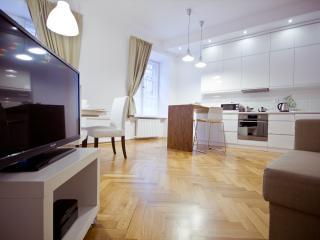 Beatiful 2 bedroom Old Town apartment! Bednarska - Central Poland vacation rentals