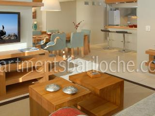 Charming Condo with Internet Access and Central Heating - San Carlos de Bariloche vacation rentals