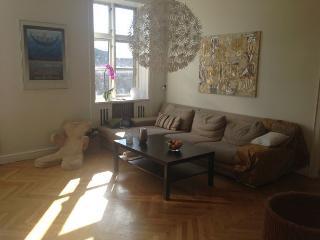 Lovely Copenhagen apartment at Frederiksberg district - Copenhagen vacation rentals