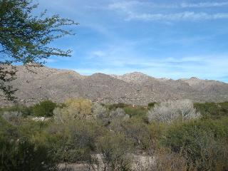 1 Bedrm/Den with Fantastic Mountain Views-Open floor plan- King bed in Master - Tucson vacation rentals