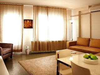 Comfortable Condo with Internet Access and A/C - Istanbul vacation rentals