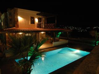 Luxury Villa with privat pool at the sea in Bodrum/ Turkey - Gundogan vacation rentals