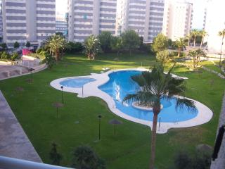 Coastal Apartment/ Costa Blanca Spain - Campello vacation rentals