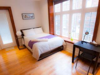 Beautiful one bed room apartment - Toronto vacation rentals