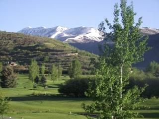 Wintergreen - Close to Park City, Soldier Hollow and Middle Provo River - Midway vacation rentals