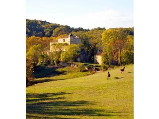 Chateau Le Quille - La Celle-sous-Gouzon vacation rentals