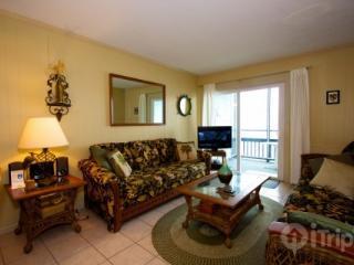 Sea Oaks 206 - Surfside Beach vacation rentals