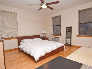 13854/ Newly Renovated Studio In Murray Hill - LaFayette vacation rentals
