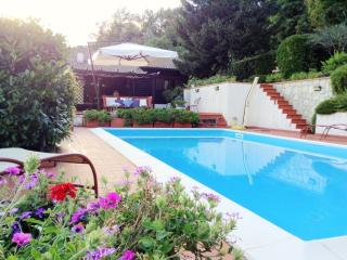 Luxury villa on the hills with pool in 5Terre Area - Casola in Lunigiana vacation rentals