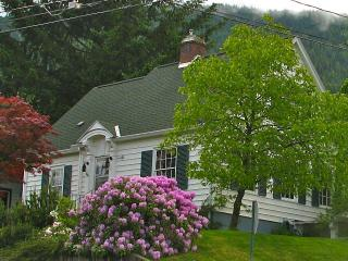 Latimer Lodgings close to downtown Nelson - Nelson vacation rentals