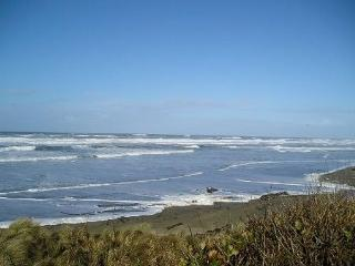 Perfect House with Deck and Satellite Or Cable TV - Waldport vacation rentals