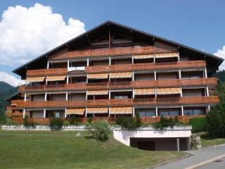 Topaze 2 ~ RA8941 - Villars-sur-Ollon vacation rentals
