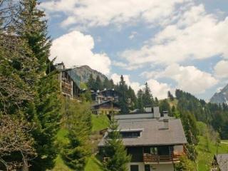 Arsets 310/22 ~ RA8857 - Alpe des Chaux vacation rentals