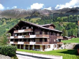 Diablerets-Parc ~ RA8811 - Les Diablerets vacation rentals