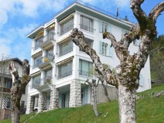 Villa Hortensia ~ RA8807 - Leysin vacation rentals