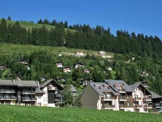 Vacation Rental in Fribourg