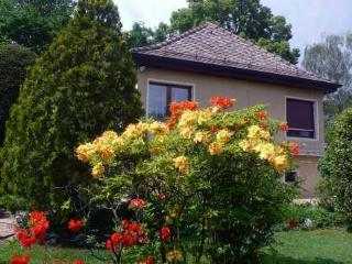 5, chemin de la Pralay ~ RA8727 - Lake Geneva vacation rentals