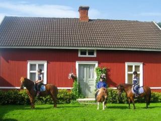 Gränna ~ RA41246 - Sweden vacation rentals