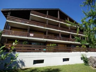 Zodiaque 101 ~ RA9123 - Ovronnaz vacation rentals