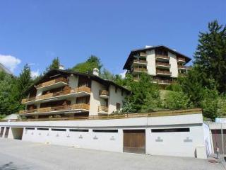 Tourbillon B 27 ~ RA9116 - Ovronnaz vacation rentals