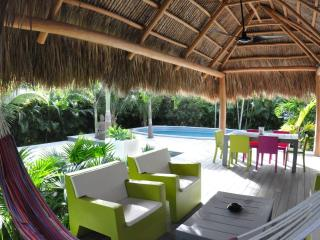 CHILL HOUSE with heated pool and tropical garden - North Miami vacation rentals