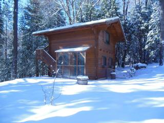 Swiss Chalet in the woods - Grass Valley vacation rentals