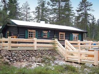 Trysil ~ RA40754 - Eastern Valleys vacation rentals